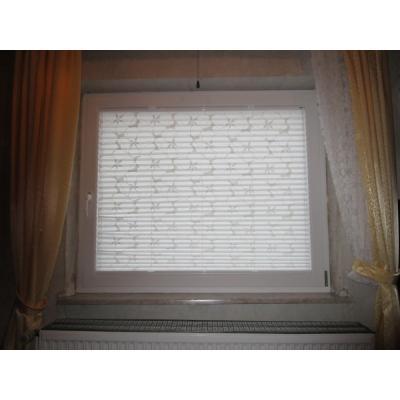 Fenster und Plissee von innen